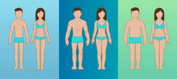 pierde în greutate tip de corp ectomorf