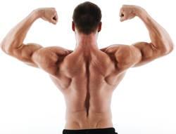 rear-delts-achterkant-schouder