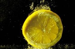 citroenschijf
