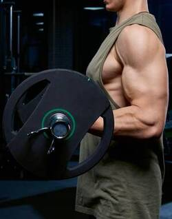 bicep-barbell-curl