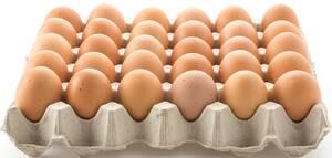 hoeveel-eieren-dag-spiermassa-afvallen