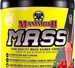 mammoth-mass